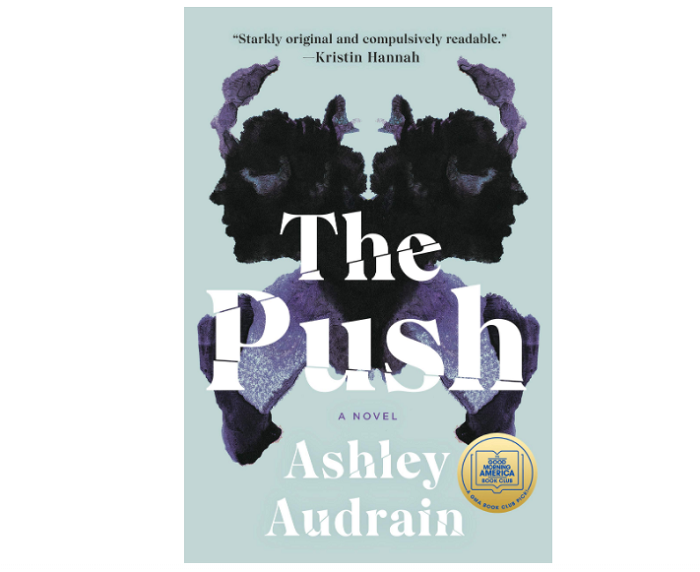 the push best psychological thrillers books