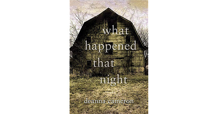 What happened that night indie book